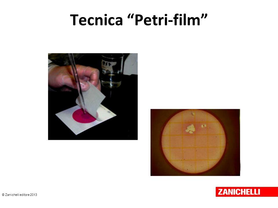 © Zanichelli editore 2013 Tecnica Petri-film