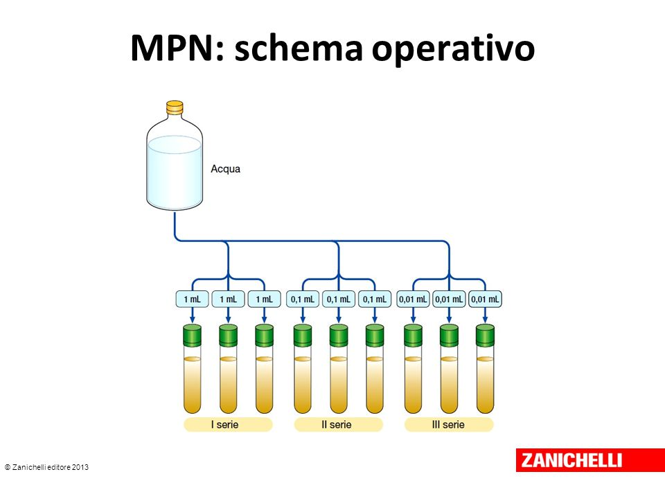 © Zanichelli editore 2013 MPN: schema operativo