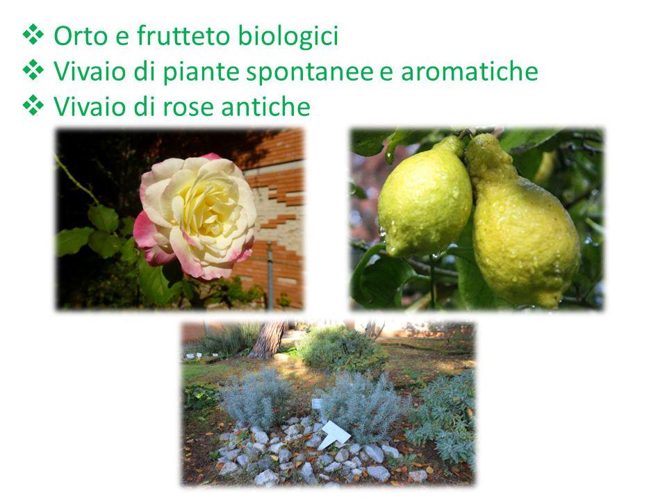 Ecco cosa potremo realizzare nel futuro Parco-Giardino ''Brunelleschi'':  Visite guidate e laboratori scientifico-ecologici per le classi di altri is