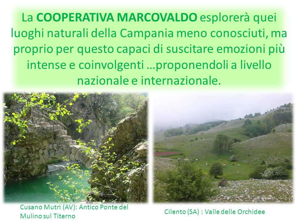 """La COOPERATIVA MARCOVALDO coinvolgerà anche altri paesi della """"Terra dei fuochi"""", come Acerra, Casoria, Cardito e tutti gli altri, ciascuno con la pro"""