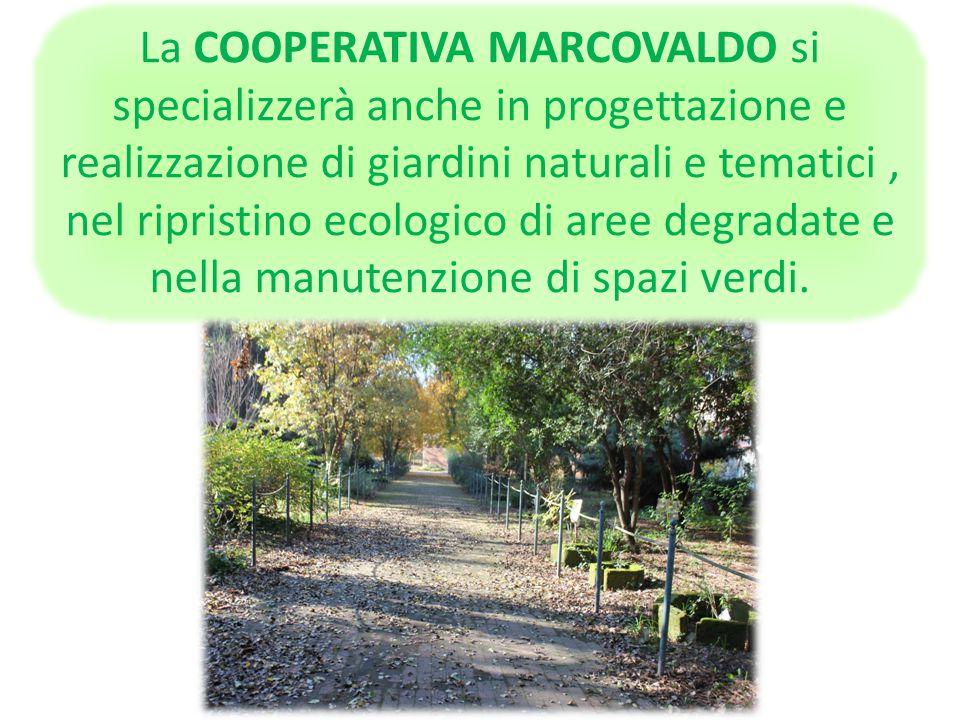 La COOPERATIVA MARCOVALDO esplorerà quei luoghi naturali della Campania meno conosciuti, ma proprio per questo capaci di suscitare emozioni più intens