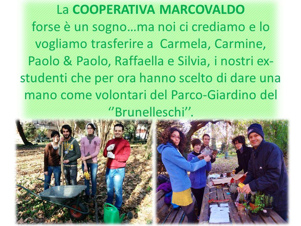 La COOPERATIVA MARCOVALDO si specializzerà anche in progettazione e realizzazione di giardini naturali e tematici, nel ripristino ecologico di aree degradate e nella manutenzione di spazi verdi.