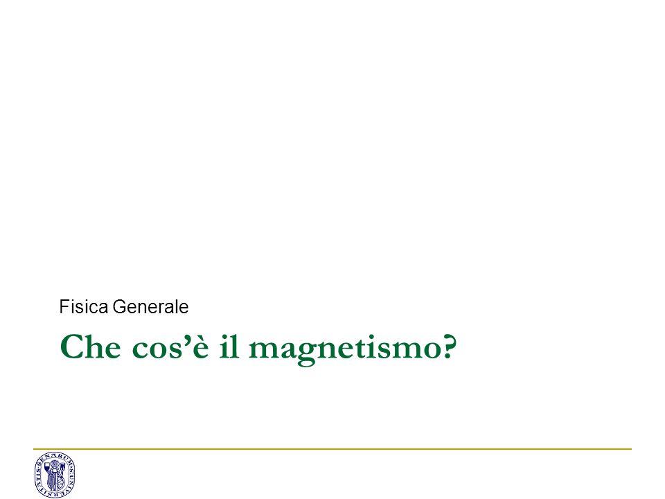 Magnetismo: fatti sperimentali Due cariche magnetiche: polo N/S.