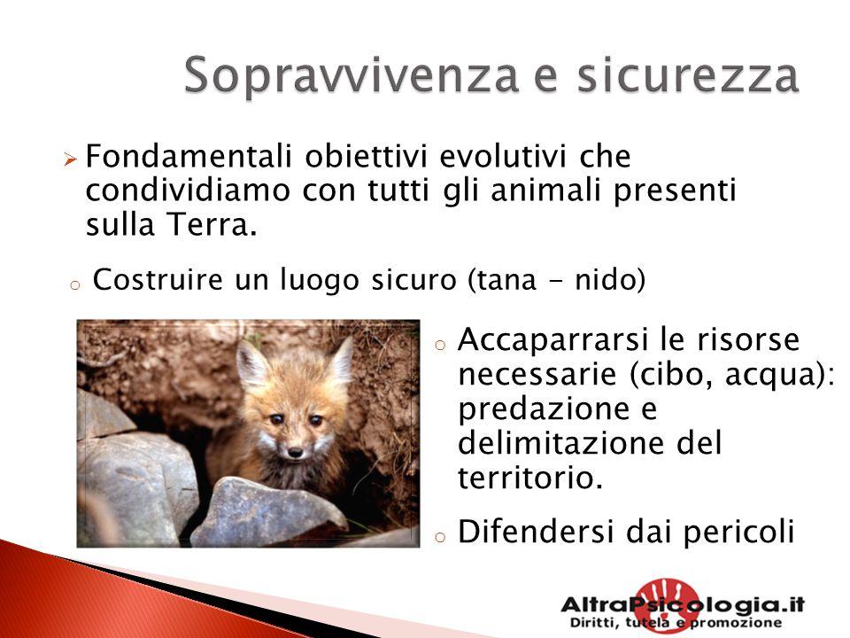  Fondamentali obiettivi evolutivi che condividiamo con tutti gli animali presenti sulla Terra. o Costruire un luogo sicuro (tana - nido) o Accaparrar