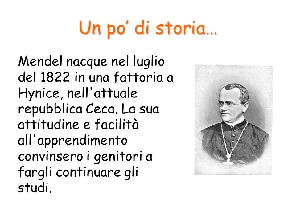 Mendel Così nel 1843 entrò nell ordine dei frati agostiniani a Brno in Moravia e dopo aver studiato le scienze e la matematica a Vienna dal 1851 al 1853 si dedicò all insegnamento all interno dell abbazia.