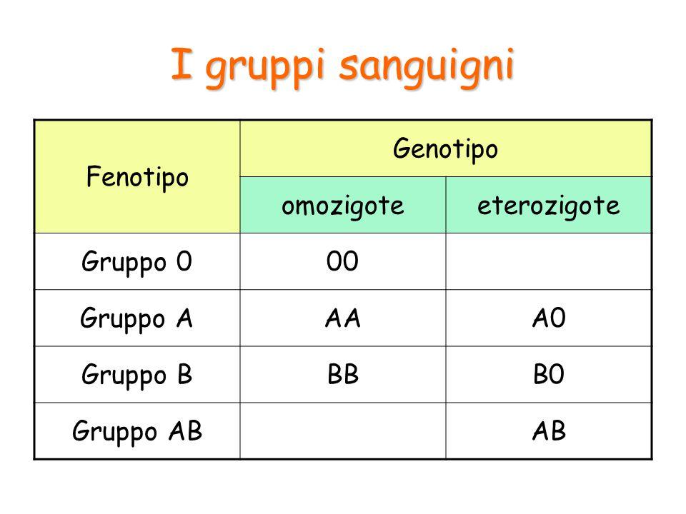 Esempio Quali sono i possibili risultati dell'incrocio tra una madre eterozigote del gruppo A e un padre del gruppo B.