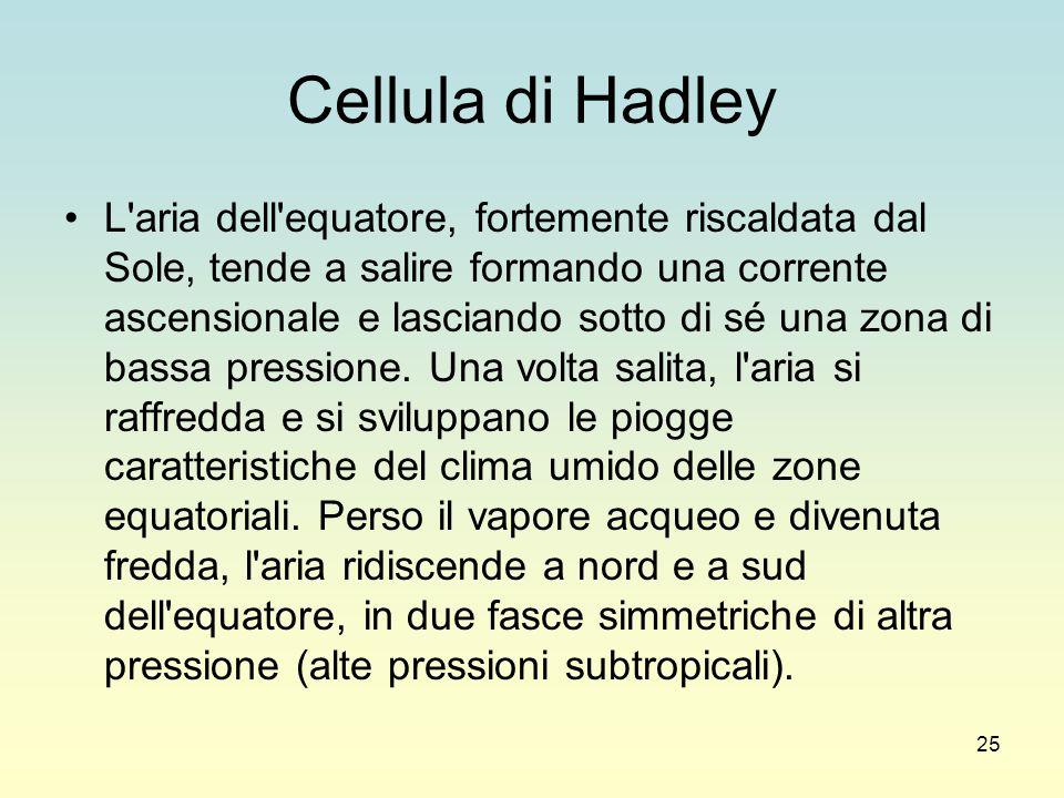 25 Cellula di Hadley L'aria dell'equatore, fortemente riscaldata dal Sole, tende a salire formando una corrente ascensionale e lasciando sotto di sé u