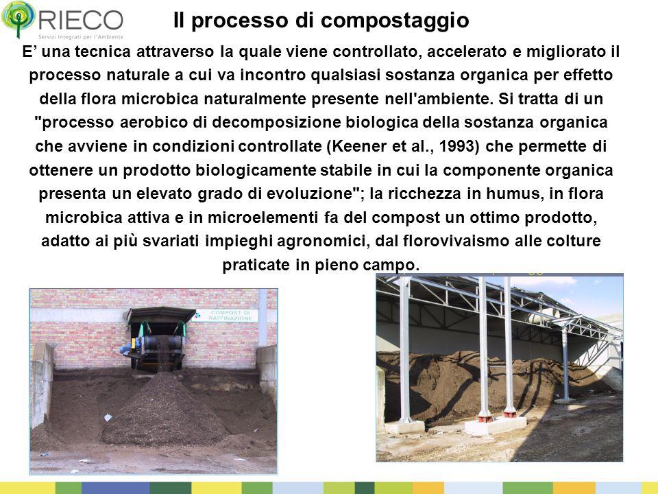 31 Il processo di compostaggio E' una tecnica attraverso la quale viene controllato, accelerato e migliorato il processo naturale a cui va incontro qu