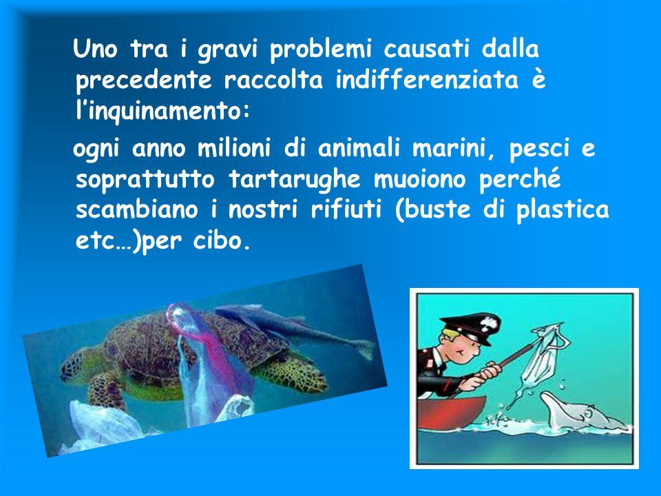 Uno tra i gravi problemi causati dalla precedente raccolta indifferenziata è l'inquinamento: ogni anno milioni di animali marini, pesci e soprattutto