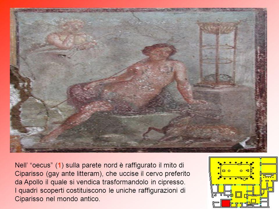 """Nel """"cubiculum"""" (C) si trovano gli affreschi di Arianna abbandonata da Teseo sull'isola di Nasso e il tragico amore di Ero suicidatasi credendo affoga"""