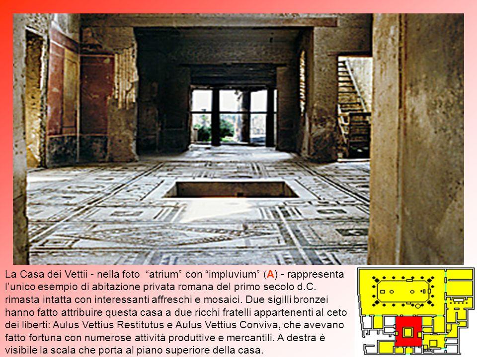 """La seconda decorazione è di rara finezza. Nella parte mediana della parete sud dell' """"oecus"""" (1) vi è un quadro mitologico raffigurante la lotta di Am"""