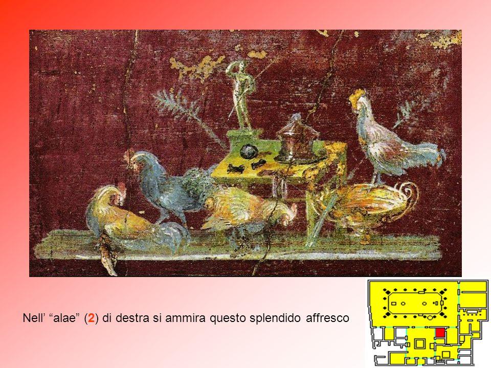 """Il terzo quadro mitologico della serie, al centro della parete destra del """"tablinium"""" (7), mostra Diòniso (Bacco) che scopre Arianna nel sonno, assopi"""