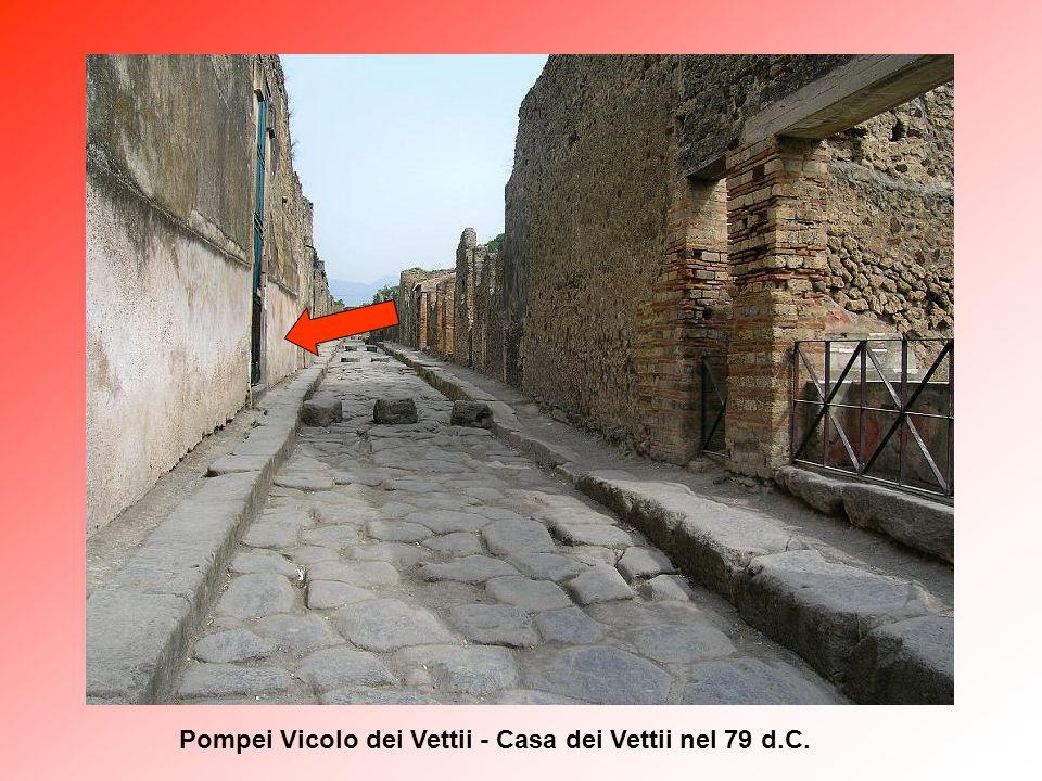 Pompei Casa dei Vettii – particolare del viridarium con vasca marmorea