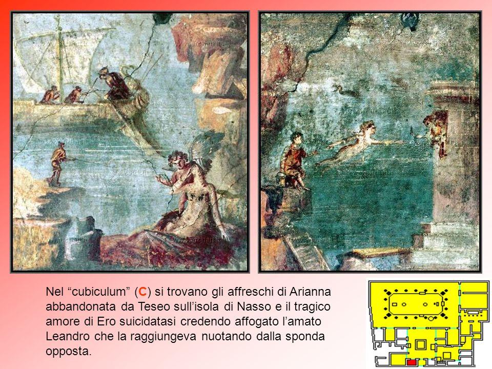 Nel cubiculum (C) si trovano gli affreschi di Arianna abbandonata da Teseo sull'isola di Nasso e il tragico amore di Ero suicidatasi credendo affogato l'amato Leandro che la raggiungeva nuotando dalla sponda opposta.