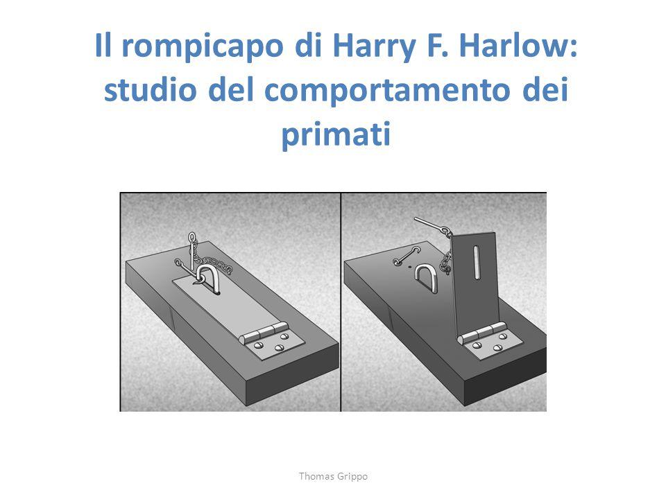 Il rompicapo di Harry F. Harlow: studio del comportamento dei primati Thomas Grippo