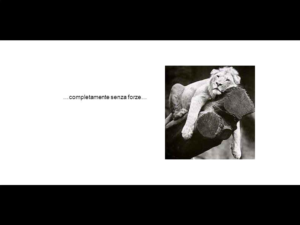…completamente senza forze…