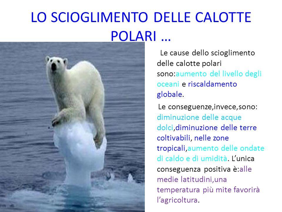 LO SCIOGLIMENTO DELLE CALOTTE POLARI … Le cause dello scioglimento delle calotte polari sono:aumento del livello degli oceani e riscaldamento globale.