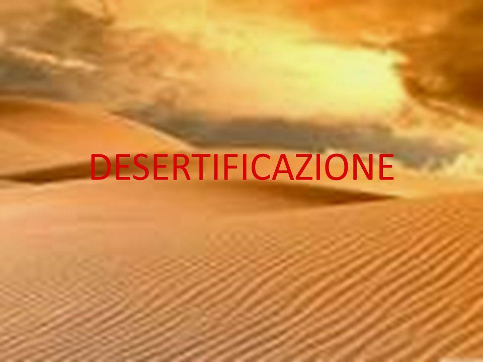 LA DESERTIFICAZIONE La desertificazione è il fenomeno che avviene quando zone semiaride, man mano,lo diventano completamente e si trasformano sempre di più in deserto.