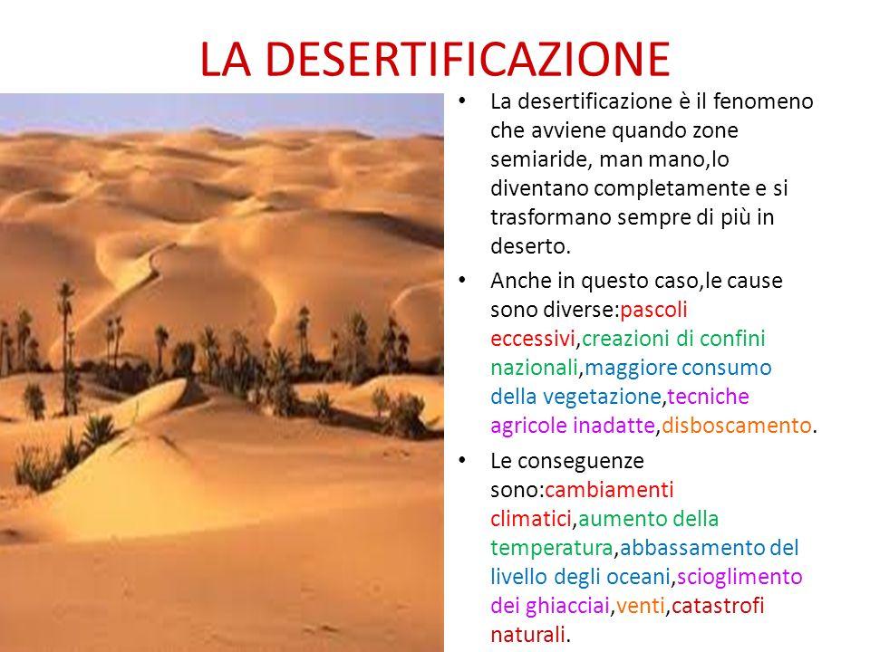 LA DESERTIFICAZIONE La desertificazione è il fenomeno che avviene quando zone semiaride, man mano,lo diventano completamente e si trasformano sempre d