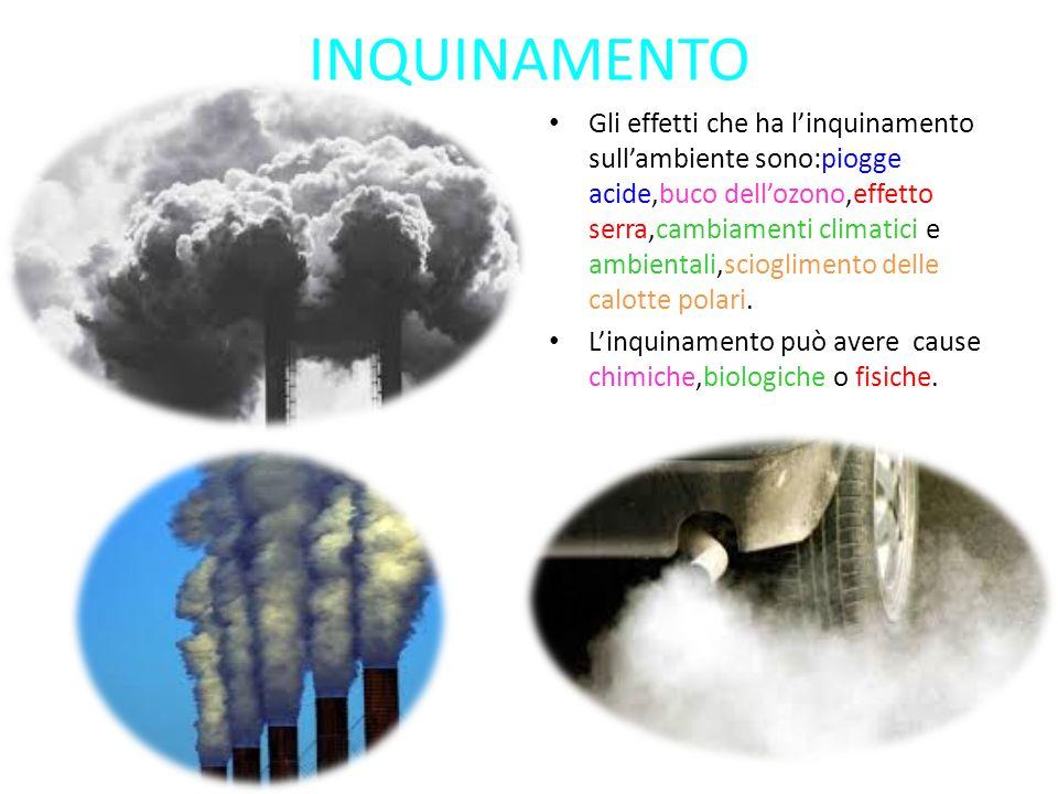 Gli effetti che ha l'inquinamento sull'ambiente sono:piogge acide,buco dell'ozono,effetto serra,cambiamenti climatici e ambientali,scioglimento delle calotte polari.