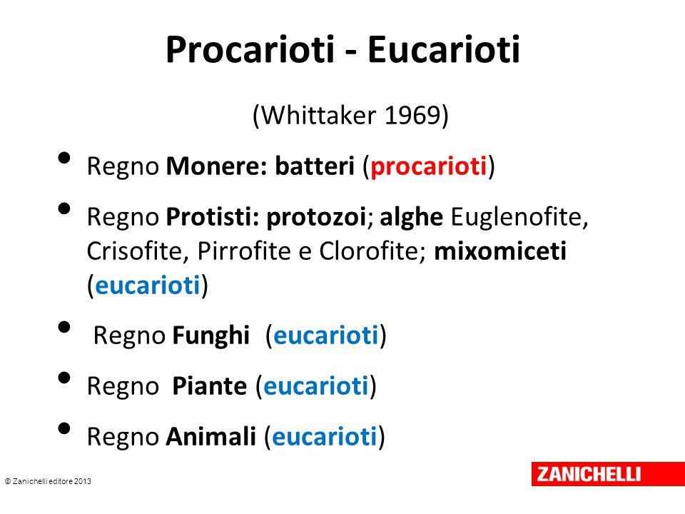 © Zanichelli editore 2013 Procarioti/Eucarioti (Woese 1990) Dominio Archaea (Archebatteri): procarioti Dominio Bacteria (altri batteri o eubatteri): procarioti Dominio Eukaria (tutti gli altri microrganismi e organismi):eucarioti