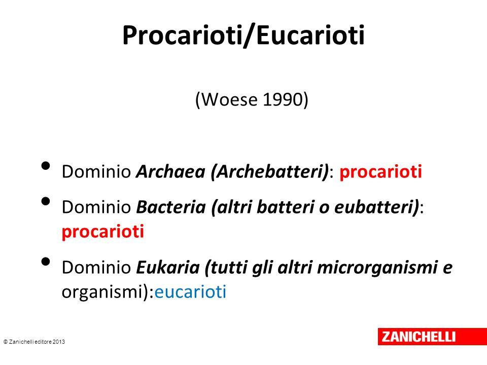 © Zanichelli editore 2013 Procarioti/Eucarioti (Woese 1990) Dominio Archaea (Archebatteri): procarioti Dominio Bacteria (altri batteri o eubatteri): p