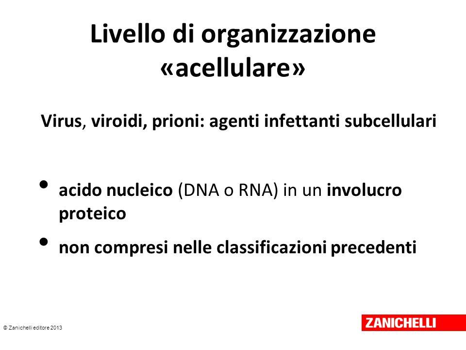© Zanichelli editore 2013 Livello di organizzazione «acellulare» Virus, viroidi, prioni: agenti infettanti subcellulari acido nucleico (DNA o RNA) in