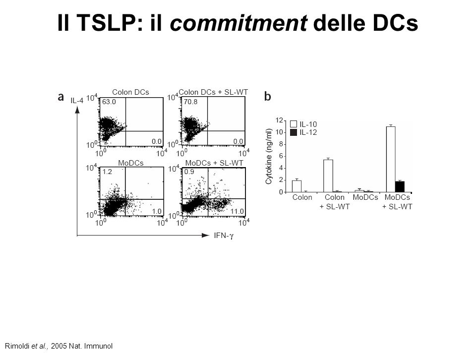 Il TSLP: il commitment delle DCs Rimoldi et al., 2005 Nat.