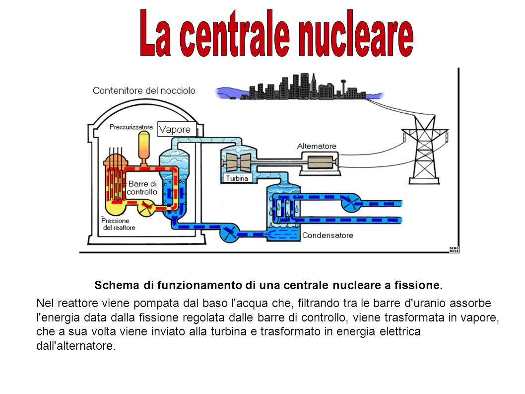 Schema di funzionamento di una centrale nucleare a fissione. Nel reattore viene pompata dal baso l'acqua che, filtrando tra le barre d'uranio assorbe
