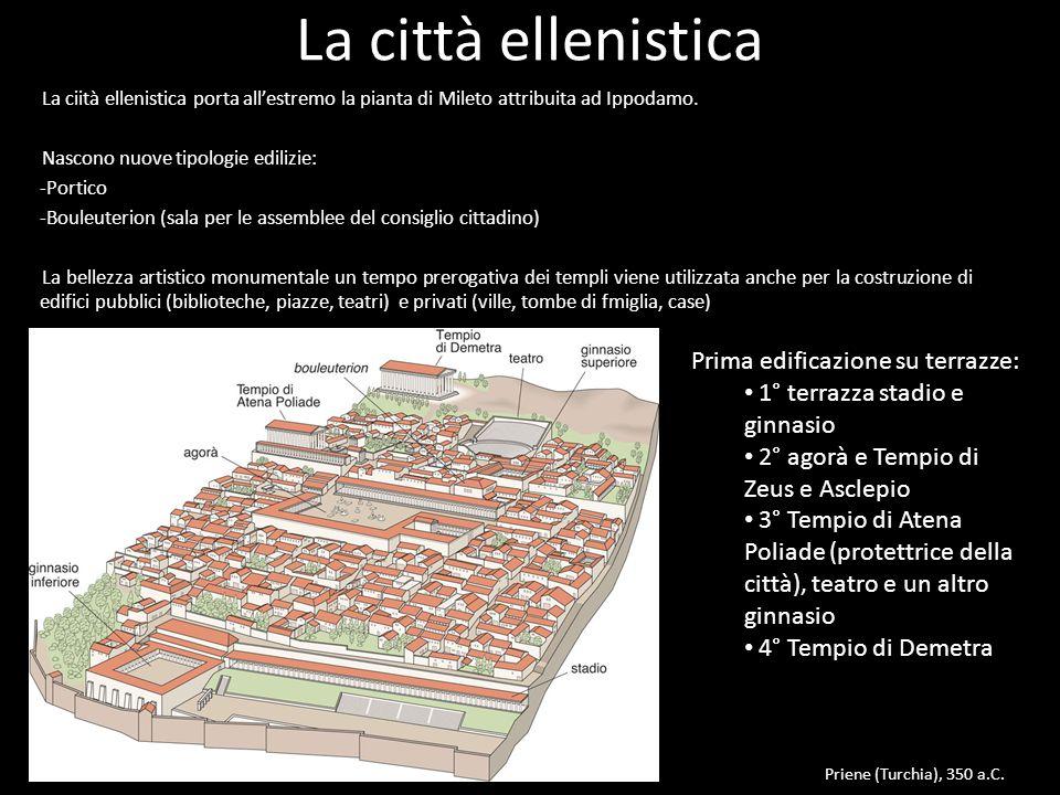 La città ellenistica La ciità ellenistica porta all'estremo la pianta di Mileto attribuita ad Ippodamo. Nascono nuove tipologie edilizie: -Portico -Bo