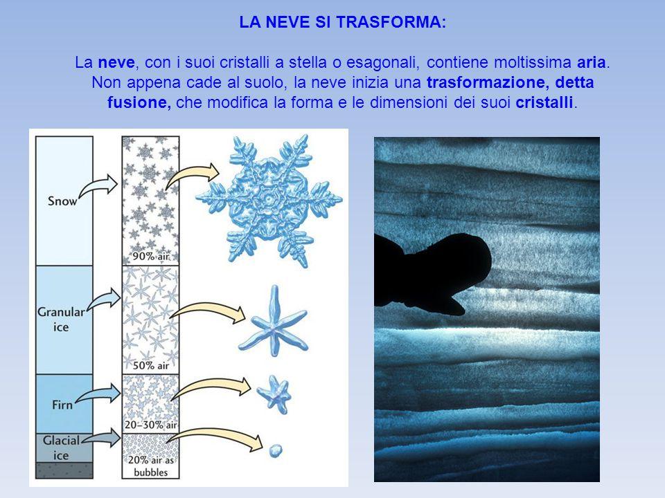 LA NEVE SI TRASFORMA: La neve, con i suoi cristalli a stella o esagonali, contiene moltissima aria. Non appena cade al suolo, la neve inizia una trasf