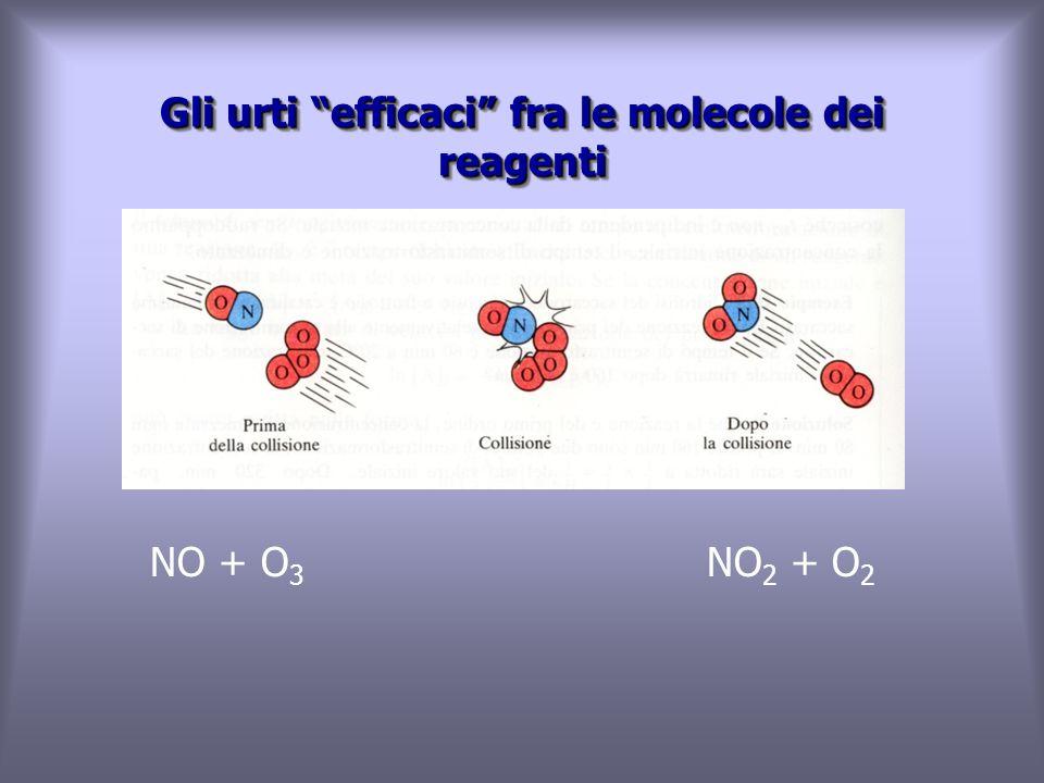 Gli urti efficaci fra le molecole dei reagenti NO + O 3 NO 2 + O 2