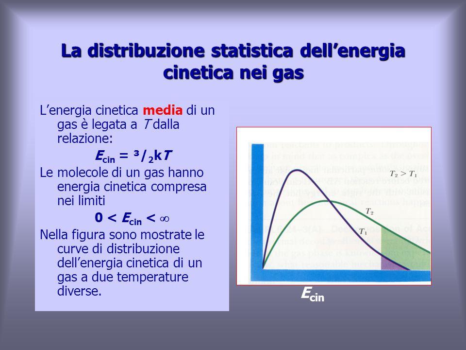 La distribuzione statistica dell'energia cinetica nei gas L'energia cinetica media di un gas è legata a T dalla relazione: E cin = ³/ 2 kT Le molecole di un gas hanno energia cinetica compresa nei limiti 0 < E cin <  Nella figura sono mostrate le curve di distribuzione dell'energia cinetica di un gas a due temperature diverse.