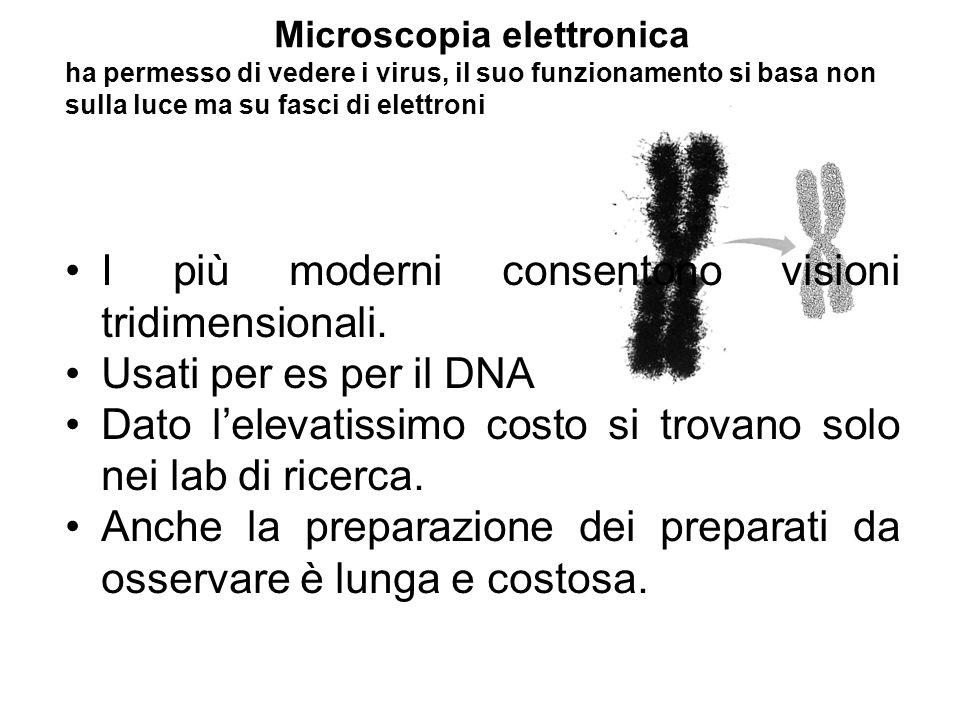 Microscopia elettronica ha permesso di vedere i virus, il suo funzionamento si basa non sulla luce ma su fasci di elettroni I più moderni consentono visioni tridimensionali.