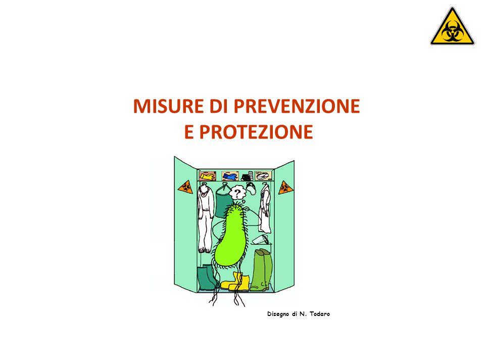 MISURE DI PREVENZIONE E PROTEZIONE Disegno di N. Todaro