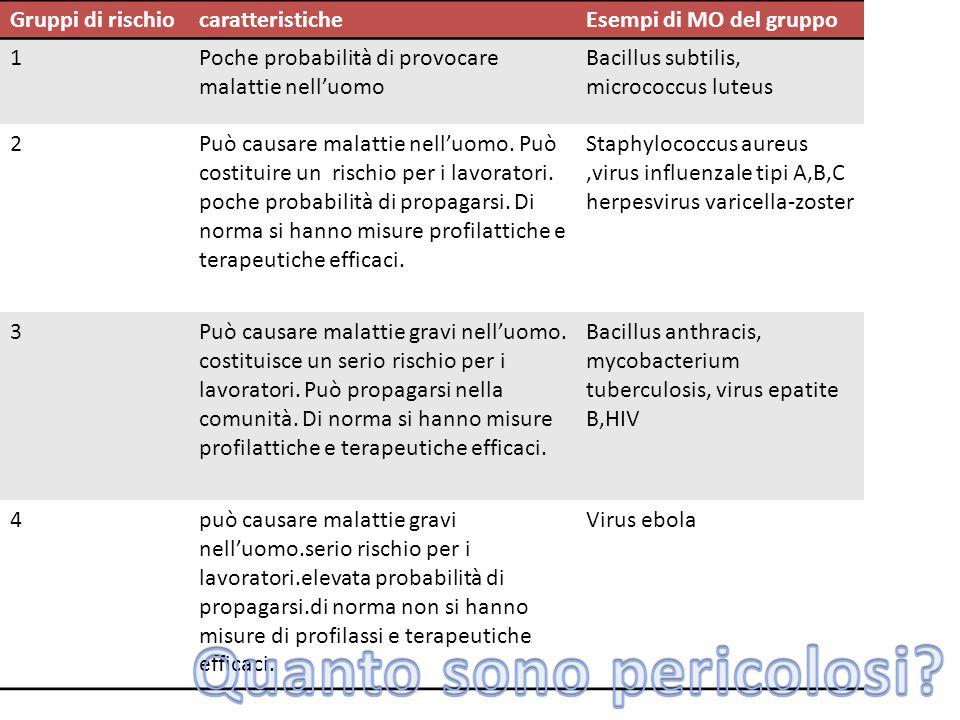 Gruppi di rischiocaratteristicheEsempi di MO del gruppo 1Poche probabilità di provocare malattie nell'uomo Bacillus subtilis, micrococcus luteus 2Può causare malattie nell'uomo.