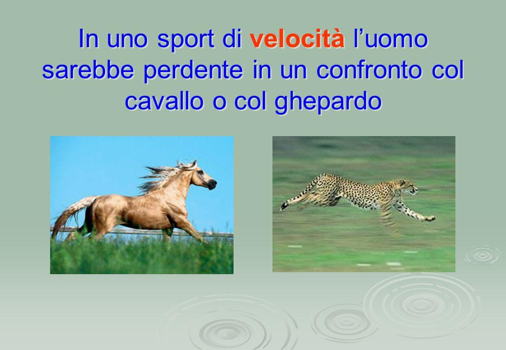 In uno sport di velocità l'uomo sarebbe perdente in un confronto col cavallo o col ghepardo In uno sport di velocità l'uomo sarebbe perdente in un con