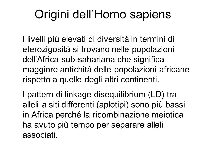 Origini dell'Homo sapiens I livelli più elevati di diversità in termini di eterozigosità si trovano nelle popolazioni dell'Africa sub-sahariana che significa maggiore antichità delle popolazioni africane rispetto a quelle degli altri continenti.