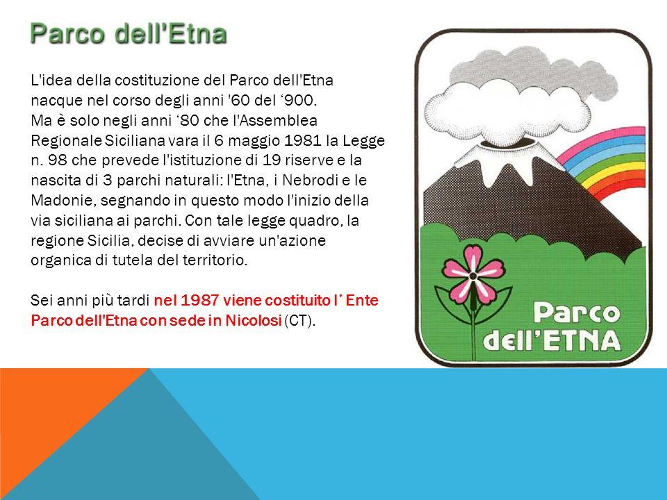 L'idea della costituzione del Parco dell'Etna nacque nel corso degli anni '60 del '900. Ma è solo negli anni '80 che l'Assemblea Regionale Siciliana v