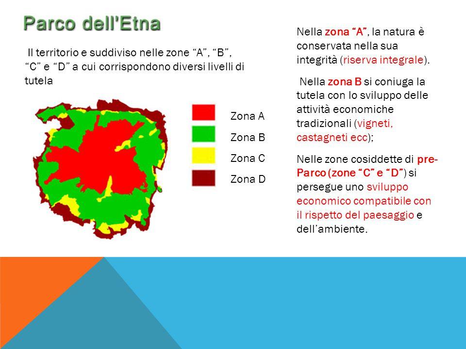 """Il territorio e suddiviso nelle zone """"A"""", """"B"""", """"C"""" e """"D"""" a cui corrispondono diversi livelli di tutela Zona A Zona B Zona C Zona D Nella zona """"A"""", la"""
