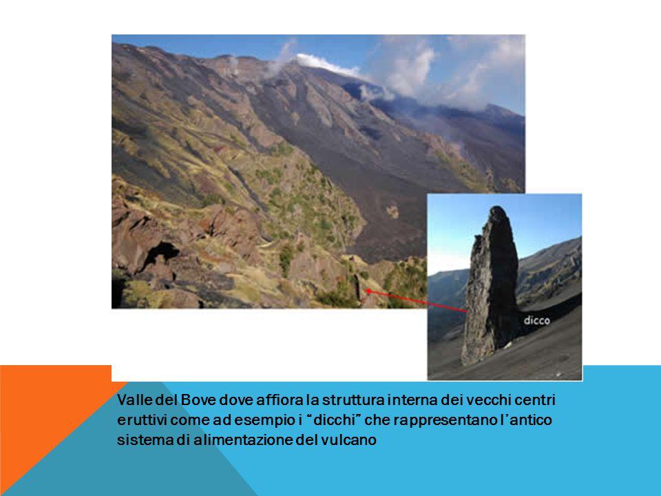 """Valle del Bove dove affiora la struttura interna dei vecchi centri eruttivi come ad esempio i """"dicchi"""" che rappresentano l'antico sistema di alimentaz"""