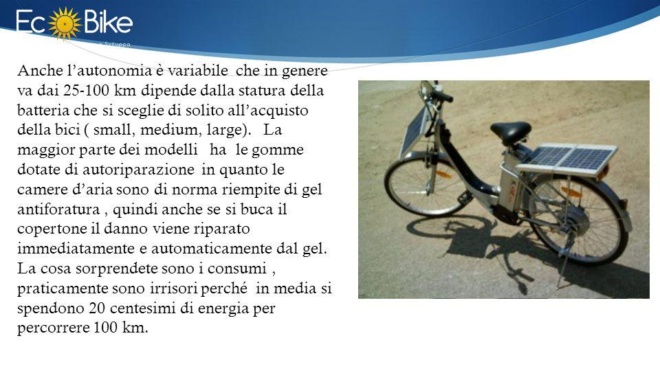 Anche l'autonomia è variabile che in genere va dai 25-100 km dipende dalla statura della batteria che si sceglie di solito all'acquisto della bici ( small, medium, large).