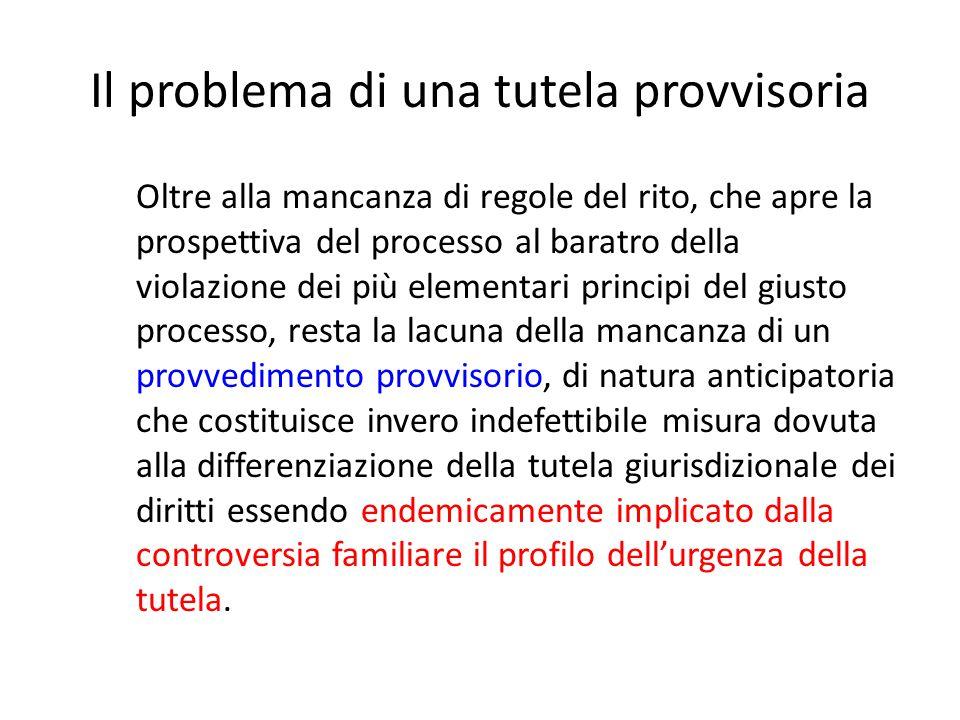 Il problema di una tutela provvisoria Oltre alla mancanza di regole del rito, che apre la prospettiva del processo al baratro della violazione dei più