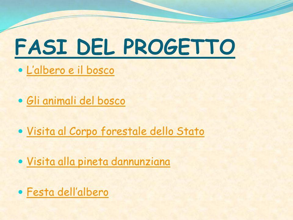 FASI DEL PROGETTO L'albero e il bosco Gli animali del bosco Visita al Corpo forestale dello Stato Visita alla pineta dannunziana Festa dell'albero