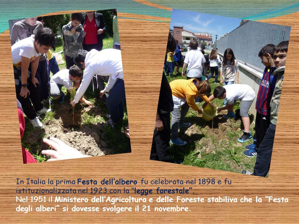 """In Italia la prima Festa dell'albero fu celebrata nel 1898 e fu istituzionalizzata nel 1923 con la """"legge forestale"""". Nel 1951 il Ministero dell'Agric"""