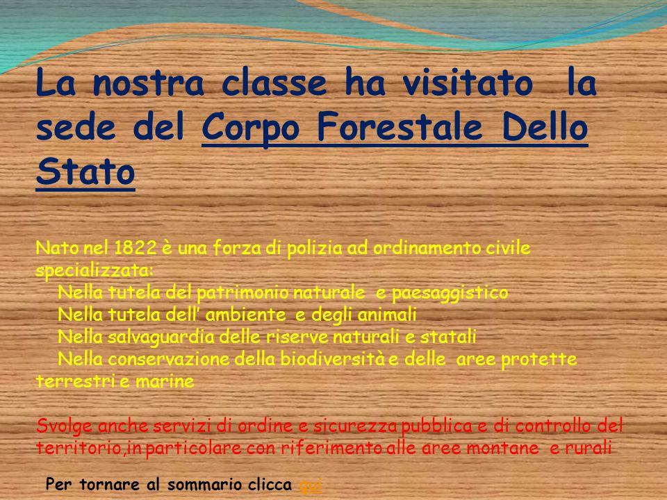 La nostra classe ha visitato la sede del Corpo Forestale Dello Stato Nato nel 1822 è una forza di polizia ad ordinamento civile specializzata: Nella t