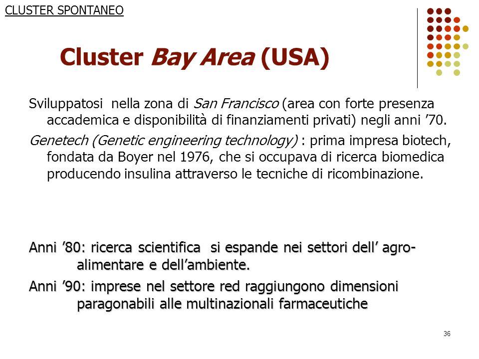 36 Cluster Bay Area (USA) Sviluppatosi nella zona di San Francisco (area con forte presenza accademica e disponibilità di finanziamenti privati) negli