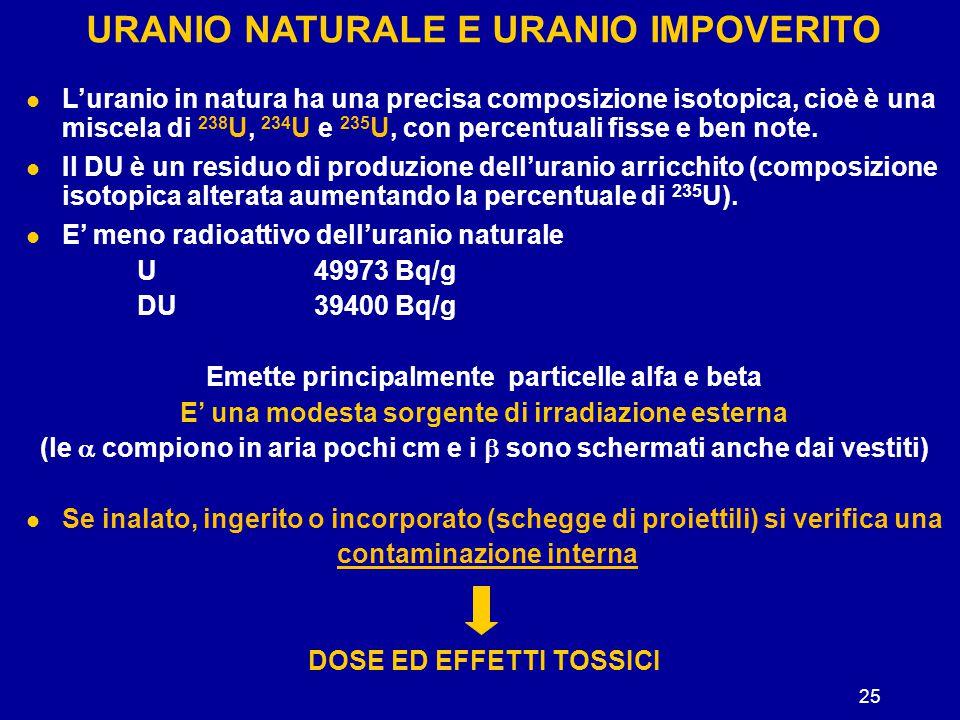 25 URANIO NATURALE E URANIO IMPOVERITO L'uranio in natura ha una precisa composizione isotopica, cioè è una miscela di 238 U, 234 U e 235 U, con perce