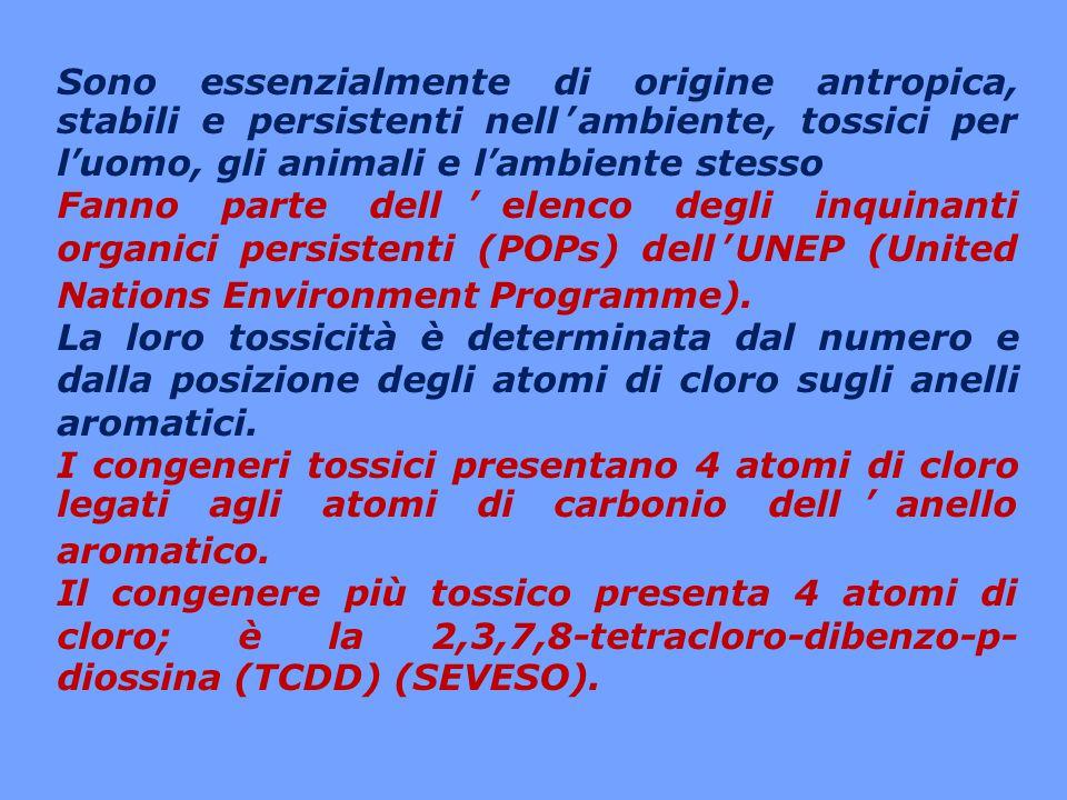 PCDD/F: due delle dodici classi di inquinanti organici persistenti (POPs) della Convenzione di Stoccolma adottata il 22 maggio 2001.