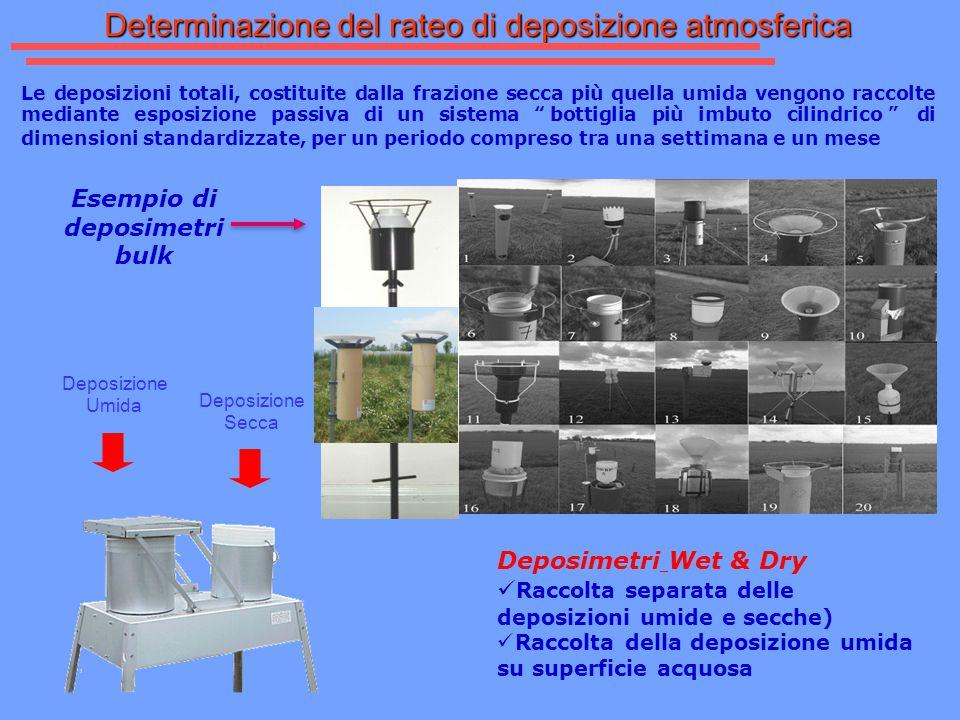 Allegato 1, punto 1.6 Misure non automatiche Deposizioni atmosferiche Specie da analizzare : Deposizioni atmosferiche: che possono essere di tipo secco ed umido.